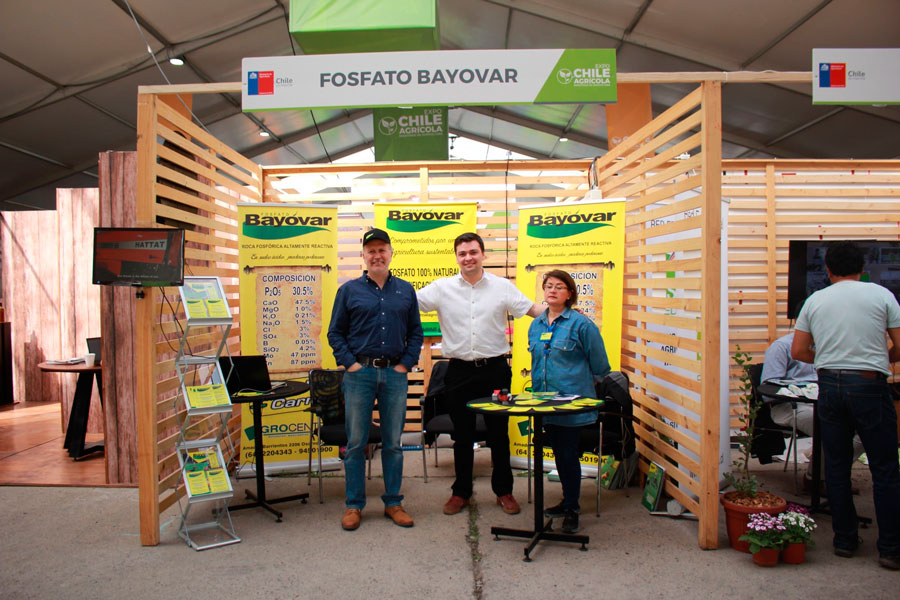 Fosfato Bayovar