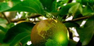 Fruittrade2019