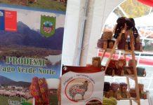 Expo Mujer Rural 2019