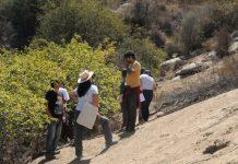 restauración ecológica de laderas