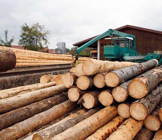 ASCC Industria de la madera del Maule