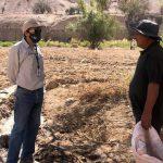 recuperación de suelos degradados