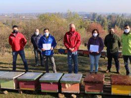 apicultores afectados por la crisis hídrica