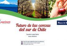 Cerezas del sur de Chile