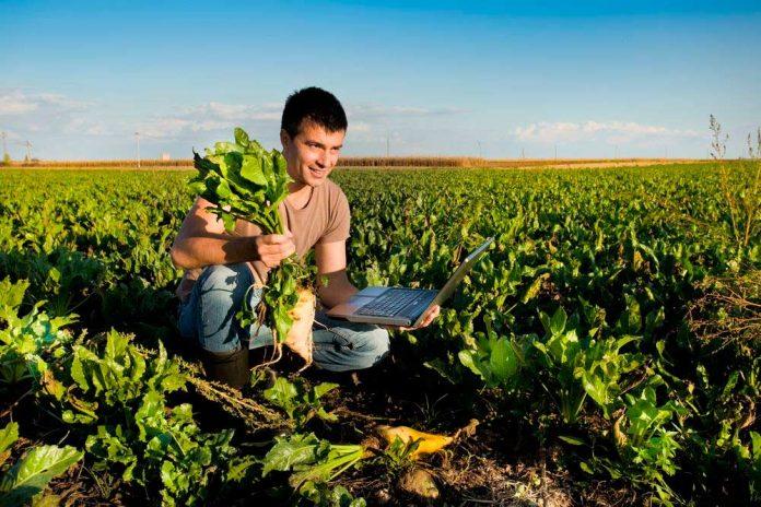 reconstrucción de la agricultura post covid-19
