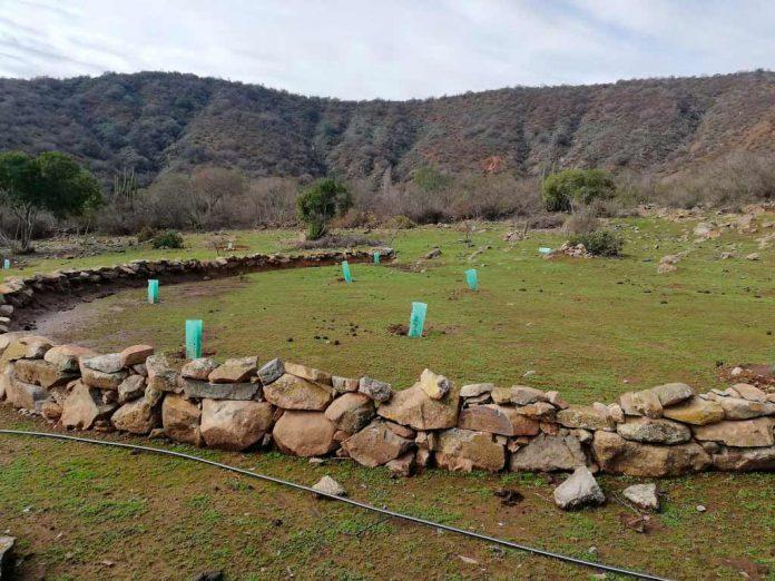 Proyecto de Retribución por Servicios Ambientales CONAF PNUD