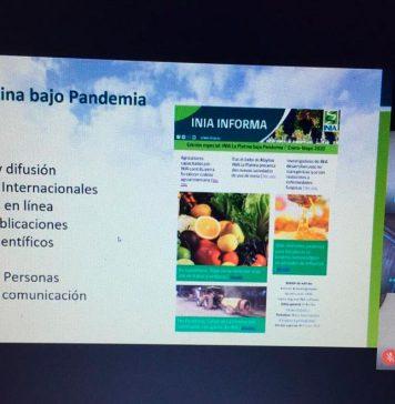 En Consejo Directivo Externo de INIA La Platina: Seremi de Agricultura RM destaca rol de la innovación a la hora de tomar decisiones