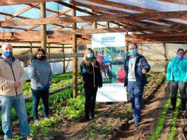 hortalizas agroecológicas