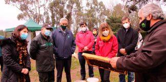 Iniciativa pionera en Biobío capacitará en sector apícola a internos de CET Punta de Parra
