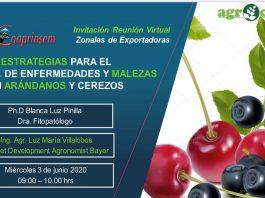 Jornada Estrategias para el control en enfermedades y malezas en arándanos y cerezos / Cooprinsem-Bayer