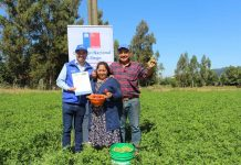 CNR anuncia nuevo concurso para pequeños agricultores de La Araucanía en contexto del Plan Impulso