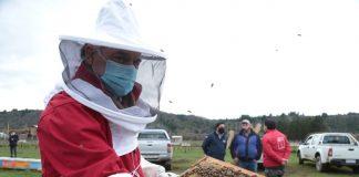Día de la Miel