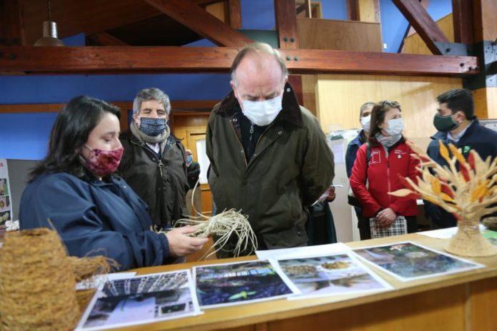 Ministro Walker valora implementación de sistema de monitoreo de bosques nativos en Los Ríos