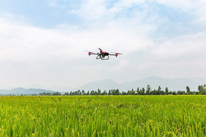 Cómo la tecnología en el agro ayuda a los pequeños pequeños agricultores a ser competitivos