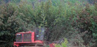 Máquina trituradora de material vegetal