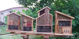 Hotel cobija a insectos para control natural de plagas