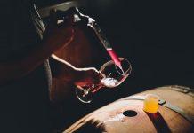 Innovación permitirá detectar la huella genética de los vinos chilenos