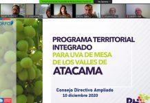 PTI de Uva de Mesa de Atacama avanza a segundo año de ejecución