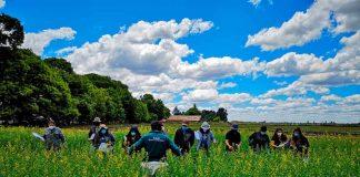 SAG Biobío realiza taller práctico a empresas productoras de semillas