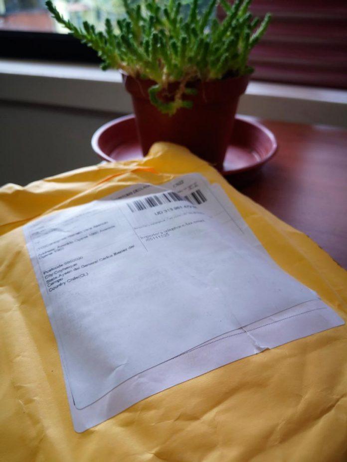 SAG Aysén llama a estar atentos ante paquetes de semillas recibidas desde el extranjero