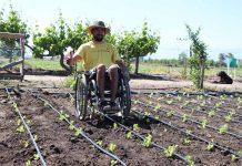 Farm Hability: innovación de joven que abre el campo hacia la inclusión