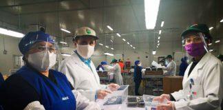 Minagri destaca positivo impacto de Systems approach en exportaciones de arándanos a EE.UU.