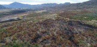 SAG hace un llamado a la comunidad extremar medidas de prevención para evitar incendios forestales