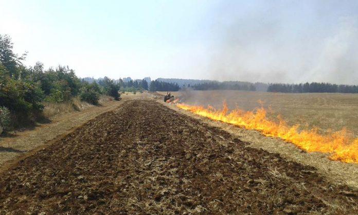 CONAF hace llamado a agricultores a no hacer uso del fuego sin antes registrar sus avisos de quema