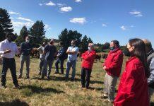 Ganaderos locales posicionan producción de carnes de libre pastoreo por sus atributos saludables y de bienestar animal