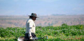 Incorporación de la región de Arica y Parinacota a la cobertura nacional de predios rurales
