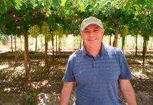 Los aprendizajes de una exportación frutícola resiliente en pandemia