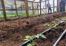 minagri-y-cnr-buscan-potenciar-el-riego-en-la-pequena-agricultura-de-biobio