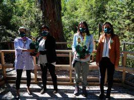 Ministra Undurraga lanza proyecto + Bosques para la gestión sustentable de más de 25 mil hectáreas de bosque nativo en Chile