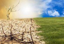 SAG e IICA realizarán seminario internacional sobre Sustentabilidad Agroambiental de Suelos Agropecuarios en América, cambio climático y Objetivos de Desarrollo Sostenible