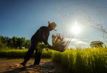 INIA La Platina capacita a agricultores de la región Metropolitana sobre los microorganismos y su aplicación en la agricultura