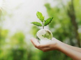 Experto de Agronomía UdeC plantea los principales desafíos para un planeta sano
