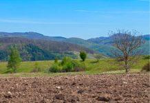Indap Biobío llama a productores a postular a concurso para mejorar suelos agrícolas
