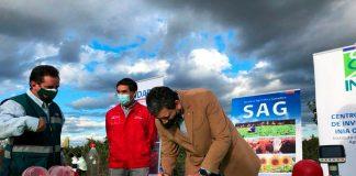 Ministerio de Agricultura aumenta a 750 las trampas para controlar la plaga Drosophila Suzukii en la Región del Maule