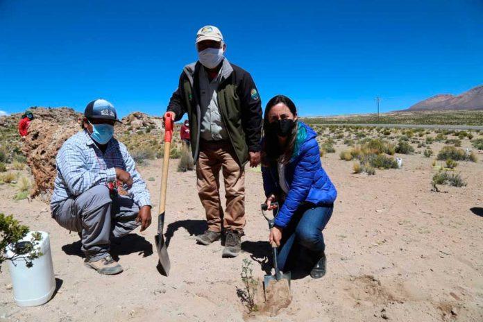 En el Día Internacional de la Tierra la Ministra de Agricultura visita el extremo norte de Chile para abordar en terreno las brechas y oportunidades en materia de desarrollo rural