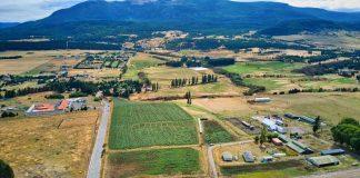 SAG, INIA y Liceo Bicentenario Agrícola de la Patagonia realizaron ensayo de variedades de papa