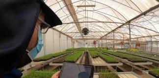 Arica y Parinacota avanza hacia una agricultura más sustentable y tecnológica