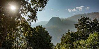 Día de la Diversidad Biológica: Los desafíos de la conservación de tierras en Chile