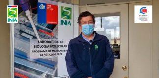 Doctor Manuel Muñoz destaca el impacto de las variedades de papa del INIA