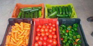 """El """"Amazon"""" de frutas y verduras se consolida como una startup de triple impacto"""