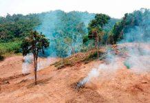 INIA La Platina entrega recomendaciones sustentables para evitar quemas agrícolas