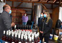 Indap abrirá concurso por 425 millones para apoyar vinificación asociativa