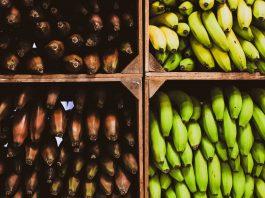 Inteligencia artificial detecta daños en frutas de exportación con ahorro de tiempo y costos