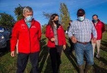 """Ministra María Emilia Undurraga en Cuenta Pública Participativa 2020: """"La agricultura y el sector forestal representan un importante motor de desarrollo para nuestro país"""""""
