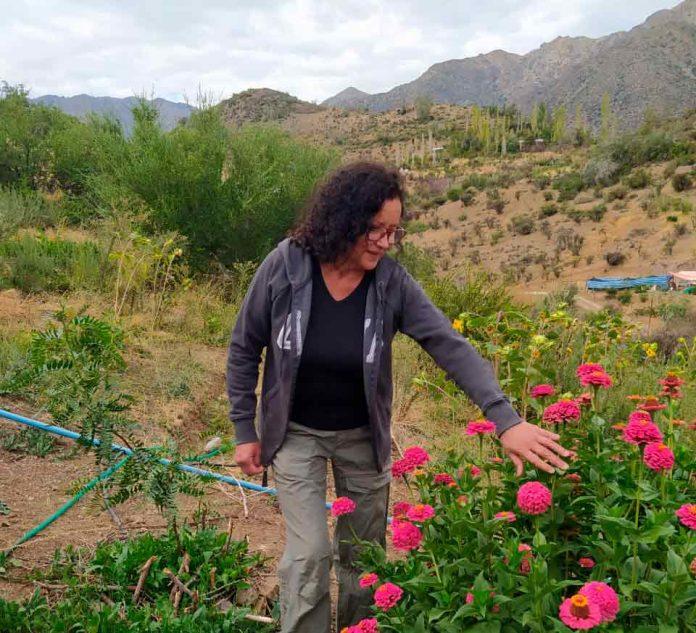 Pequeña agricultora de San Esteban ganó concurso de relatos sobre el cambio climático