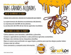 #DíaMundialDeLasAbejas: Unas grandes al(i)adas